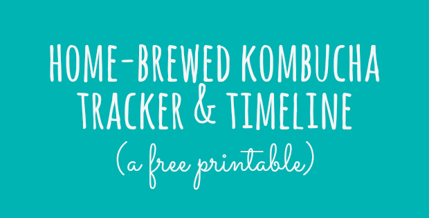 kombucha tracker FB