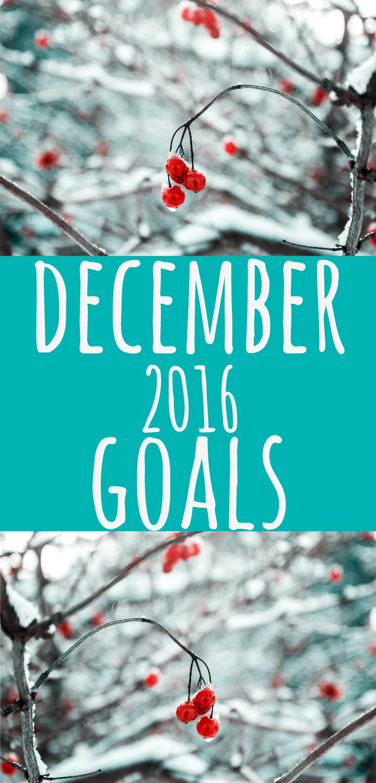december-2016-goals-pin