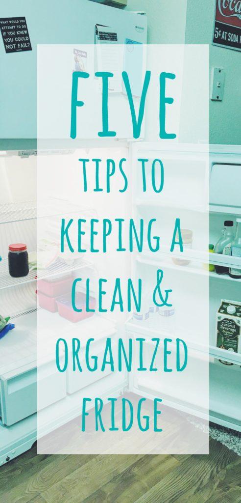 clean-fridge-pin